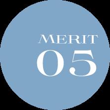 MERIT01