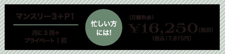忙しい方には!マンスリー3。月に3回+プライベート1回16,250円(税別)