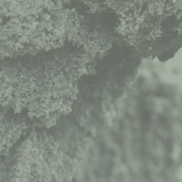 天然鉱石を温める溶岩ホットヨガ
